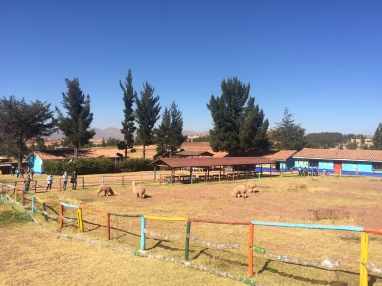 Pumamarca 2